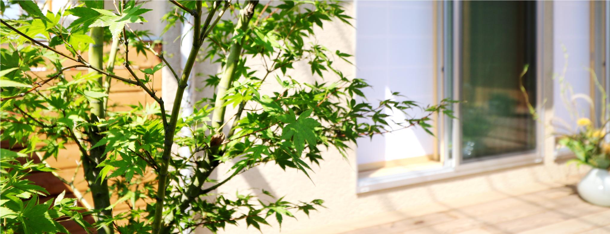 庭づくり 関元工務店 香川県高松市